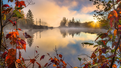 Lake, Forest, Autumn, RED