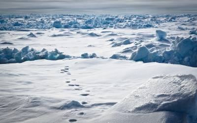 Polartracks