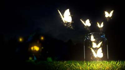 Lightning butterfly
