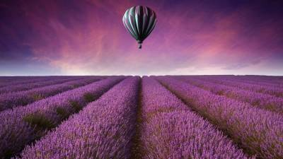 Purple Flower Field Air Ballon