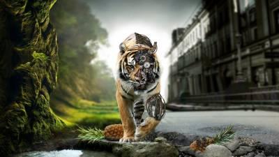 Тигр Робот