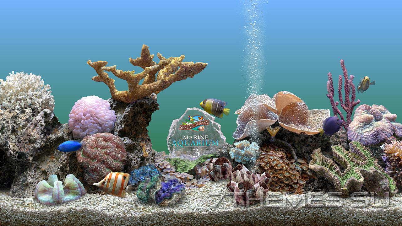 3d обои аквариум для рабочего стола