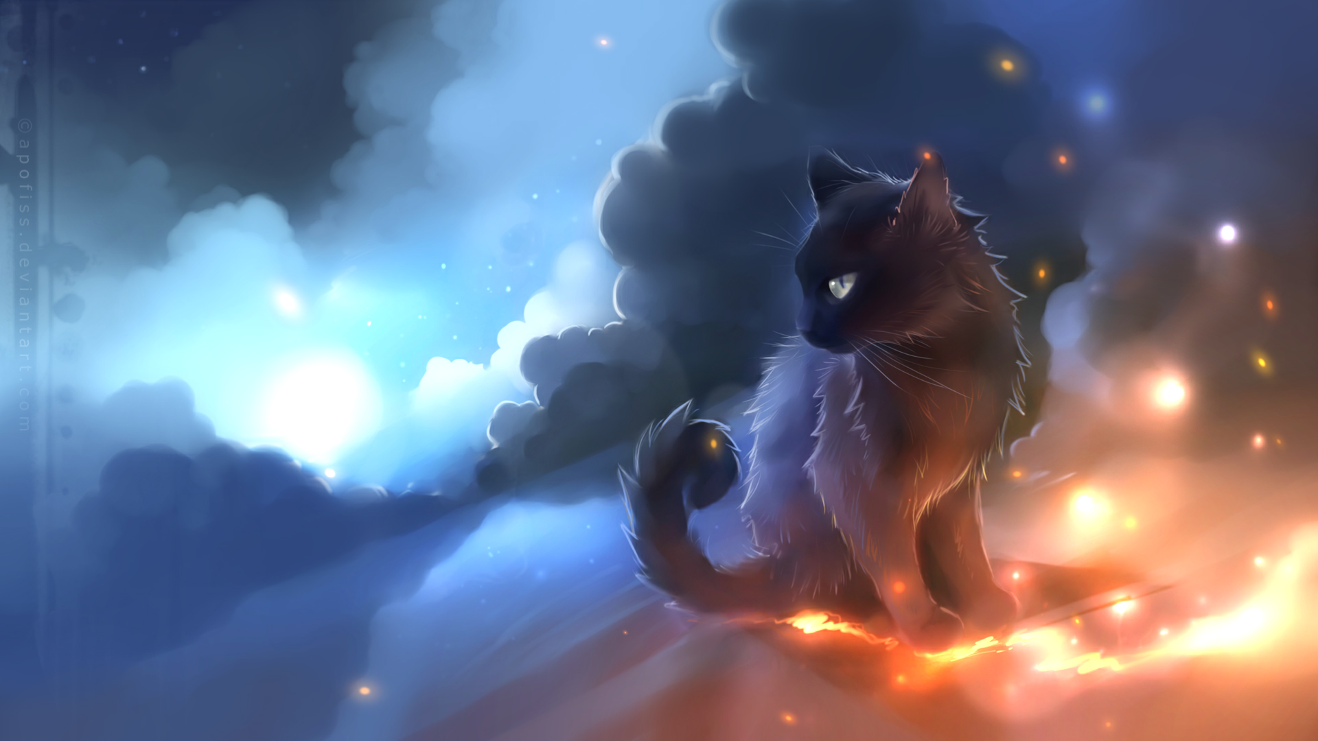 Star Clan Cat