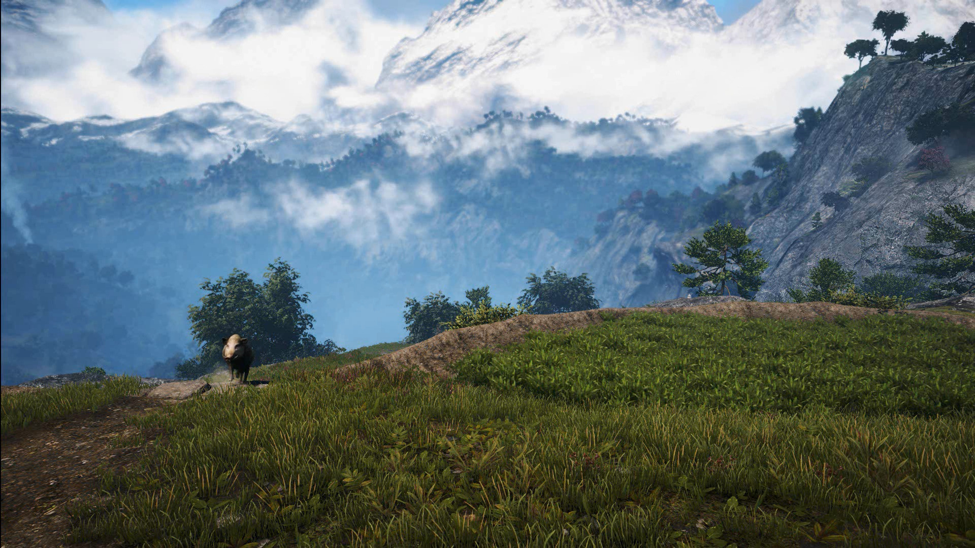 Far Cry 4 Grasslands