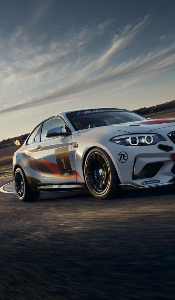 Обои BMW M2 CS Racing (600x1024)